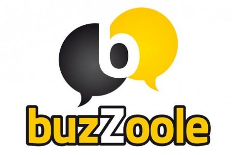 logo-buzzoole